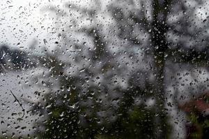 Krönikör Nygren följer en regndroppes färd längs en fönsterruta, och ser en mänsklig koppling.