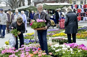 Kommunstyrelsen utökar sitt bidragskonto. Bland annat får Grythyttans IF 20 000 kronor för sin vår- och höstmarknad. På bilden botaniserar Eva-May och Håkan Åminne bland blommorna på Grythyttans marknad.ARKIVBILD: BIRGITTA SKOGLUND