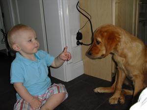 Golden retrievervalpen Vittra tycker mycket om att pussa mitt barnbarn lille Axel, 1år, i örat. Detta uppskattas inte av Axel som här tydligt på bästa hundförarvis talar om för Vittra med sitt kroppsspråk att