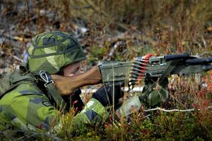 Insatskompaniet ska snabbt kunna sättas in om en fiende utan förvarning finns på svensk mark.