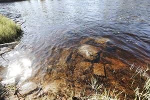 Vattnet såg inbjudande ut den varma sommarkvällen. Men på bråkdelen av en sekund förvandlades ån till en dödsfälla.