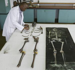 Många fossil av Homo erectus har hittats vid Turkanasjön i norra Kenya. På bilden syns det mest berömda av dem,