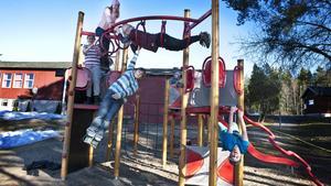 Eleverna och förskolebarnen förbjuds att gå till skogen i fortsättningen efter den senaste vargattacken.