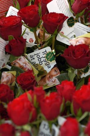 Röda rosor, en symbol för socialdemokratin och arbetarrörelsen.
