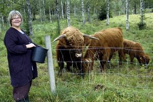 Kolugnt. Om kor har en lugnande inverkan på människor är ovisst, men för Susanne Grundström är djuren ett viktigt inslag i den verksamhet hon bygger upp i Björksjön.