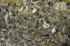 Skräp, avföring och annat bråte från avloppsvattnet som fastnat vid reningen på Tivoliverket.