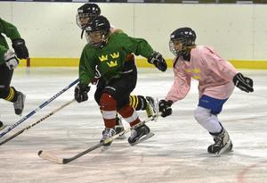 Trivdes på isen. Elin Fagrell, längst till höger, tycker att det var roligt att träna med bara tjejer.