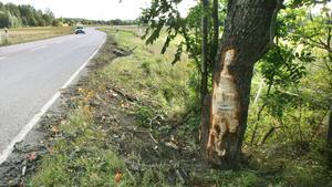 Olycksplatsen dagen efter olyckan.