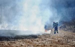 Många gräsbränder sker i onödan, menar förbundschefen Torbjörn Wannqvist.