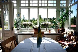 Villa Grankulla reser sig bakom lupiner och annan försommargrönska. Men inom kort rivs alla sommarhusen i området, både de som är i ursprungligt skick och de som renoverats och byggt som genom åren.