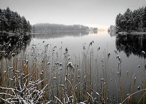 Årets digitala bild. Snöfall över Östra Laxsjön utsågs till årets bild i den digitala klassen i Askersunds fotoklubb. Foto: Jürgen Puls