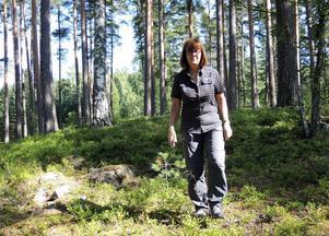 Bergviks vd får ingen del i vinsten men pension vid 60