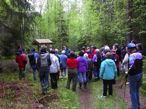 Fågelsång. Närmare 80 personer deltog när naturreservatet Djupbäcka invigdes md både fågelsång och musik.