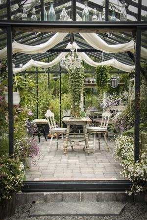 Växthuset fungerar både som arbetsplats och rekreation. Vedspisen i bakgrunden är komplett med skorsten och värmer gott på regniga sommardagar.