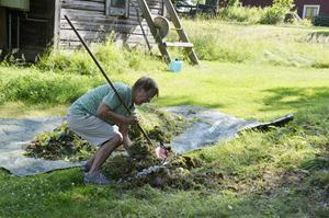 Blir kompost. Höet läggs på kompost i närheten av kyrkan. Mona Eriksson samlar ihop det.$RETURN$$RETURN$