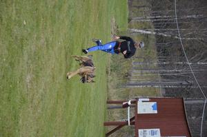Lätt uppför. Att springa med hund är en annan variant på draghundsträning. Jan Gunnarsson får hjälp i uppförsbackarna av schäfern Arne.