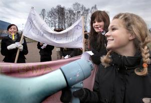 Nikolina Ljungbäck, taleskvinna för miljögruppen på Kyrkskolan är övertygad att många kan bidra till att förbättra miljön med ganska enkla medel. Foto:Gunne Ramberg