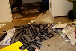 Inbrottstjuvarna verkar ha tagit sig in i en lokal intill butiken och sedan brutit upp en dörr för att ta sig in till Boom.
