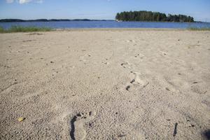 Nedanför Kalle Björklund finns en strand som familjen använt flitigt under sommaren.