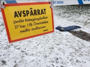 En man i 35-årsåldern hemmahörande i Västerås och en kvinna i 25-årsåldern från Avesta kommun anhölls och senare häktades sedan misstänkta för försök till mord. Mannen dömdes sedan till tre års fängelse, men inte för mordförsök utan för grov misshandel. Kvinnan frikänns dock.