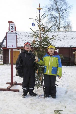 """Bröderna Eriksson från Dvärsätt, 7-årige Pontus till vänster och 5-årige Oscar vid Pontus favorit bland de sju julgranar som tävlade i årets """"Gran Prix""""."""