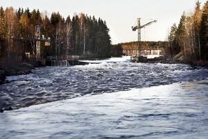 Älvräddarna vill att Fortum river ut Edeforsens kraftverk och att älvsträckan får det skydd mot kraftutbyggnad som miljöbalken avser.
