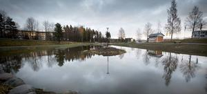 Dammen är två meter djup och här stannar miljöfarliga ämnen på botten av dammen.