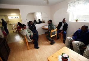 Zakaria Abdulah Tuwel, Salah Mohamed Nuur, Alraxman Xasi Mahamad, Abdirahman Yusuf Hassan, och Nuktar Ahmed Takow är fem somalier som flytt kriget i hemlandet och ska bo i Stöde under tiden deras begäran om asyl behandlas.