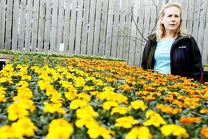 Malin Nilsson har koll på det senaste inom trädgårdsvärlden och delar också med sig av några tips.