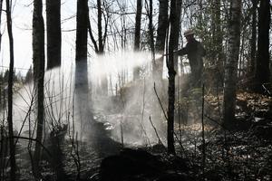 Räddningstjänsten ryckte ut till en gräsbrand på Bränderna i Alfta på fredagseftermiddagen. Tre man från Alfta och fem från Edsbyn bekämpade elden.