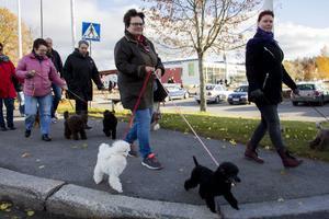 Totalt deltog närmare 100 personer och nästan lika många hundar i den rosa hundpromenaden.