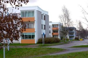Kan Tjärna ängar i Borlänge bli ett försöksområde, en så kallad nystartszon, med skattelättnader som ska underlätta företagande och skapa nya jobb? Moderaterna besöker i dag Borlänge för diskussioner med kommunen.