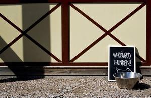 """FÖR TÖRSTIGA. Alla är välkomna till Boulognercaféet. """"Folk kommer in och frågar efter vatten till sina hundar, så vi ställde ut en skål"""", säger Therese Johansson."""