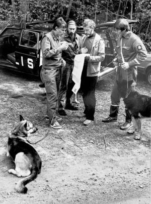 Polisen sökte med hundar i området kring Bosvedjan flera gånger, även långt efter försvinnandet återvände man för att göra nya försök att finna Johan Asplund.