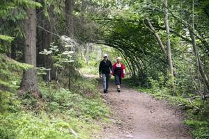 Ann-Christine och Lars-Erik Nilsson tar ofta promenader i hennes barndoms trollskog.