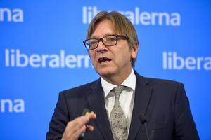 Vem är Guy? EU-liberalerna har sin kandidat till EU-kommissionens ordförande. Guy Verhofstadt kommer från Belgien och framträdde i går  tillsammans med Folkpartiet. Foto: Henrik Montgomery/TT
