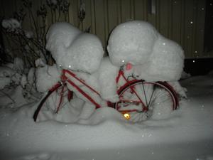 Hjälpte min fästman att flytta från Lycksele till Västerås i mellandagarna. Tur att grannens cykel inte skulle med i flyttlasset...