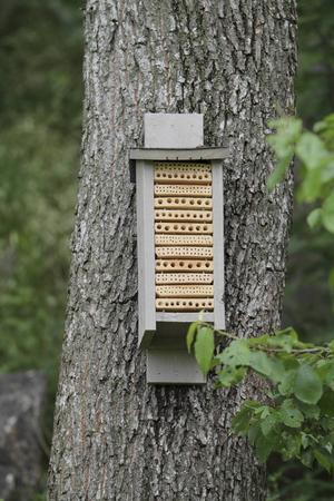 En insektsholk gör det lättare för en rad olika arter att övervintra, exempelvis fjärilar.