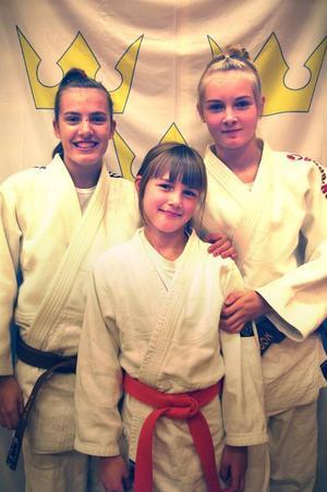 Östersund Judo hade en bra helg i Borlänge i helgen som var. Här är tre av medaljörerna i Norrcup 4: Saga Jonsson (ett guld, ett silver och ett brons), Liv Johnsson (ett guld) och Gry Johnsson (ett silver).