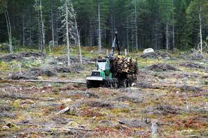 Skotaren, som används när timret ska köras ut ur skogen, kan ta 20 kubikmeter last. Med timmer väger ekipaget mellan 35 och 40 ton. En skördare har också funnits med.