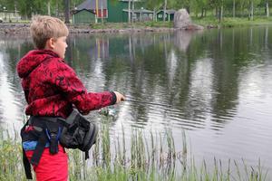Joel Nordlund, som fiskar ibland, passade på att prova fiskelyckan vid Kvarnsveden där Alfta FVOF planterat ut regnbåge. Chans finns även i dag lördag.