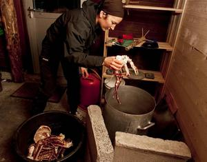 Guro Brandshaug kokar kungskrabborna i en stor gryta med havsvatten.