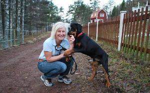 Gos och bus och lite skäll – Ingrid Andrén i Källberget får allt på en gång av en av gästerna på hundpensionatet. Foto: Annki Hällberg/DT