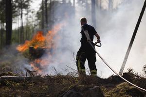 Rapporteringen om klimatet nådde en höjdpunkt under augusti och september förra året, när de svenska skogarna brann i hettan och riksdagsvalkampanjen var i full gång, skriver debattförfattarna.