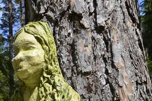 Syns i stammen. Skogsfruns gestalt syns i trädstammen.
