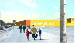 Planerna på ett Vinterpalats i Östersund har förfinats. I går visades skisser på hur det kan komma att se ut. Ska det alls byggas en vintersportarena just nu, så bör det ske i centrum. Skattebetalarna kommer i så fall betydligt lindrigare undan.