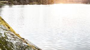 Sönerna hade sju år tidigare drunknat i en närliggande sjö – hur olyckan gick till blev aldrig fastställt.
