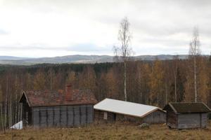 Det är inte många som har en sådan utsikt på sitt jobb. Men det här är vad Per Norgren har kunnat blicka ut över, när han har jobbat vid Pansnils fäbod i Gräsbo.