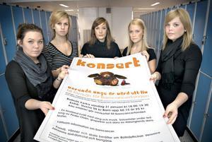 Clara Holm, Josefin Olofsson, Evelina Jonsson, Hannah Söderström och Hanna Eriksson hoppas på stort gensvar på konserten. De har satt upp affischer i Bollnäs, Kilafors, Arbrå, Edsbyn och Söderhamn. På Facebook har de fått över 100 anmälningar.
