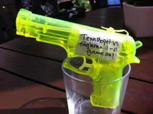 Varje bord på Tennstopets uteservering har utrustats med vattenfyllda pistoler. Tanken är att gästerna på ett lekfullt sätt ska kunna hjälpa till att skrämma bort fåglarna.